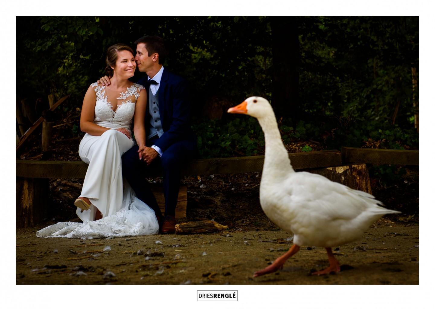004-feestzaal-huwelijk-chalet-robinson-dries-rengle